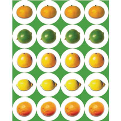 Citrus Fruit Stickers