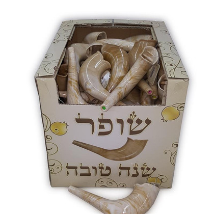 Realistic Plastic Toy Shofar - with Embedded Noisemaker