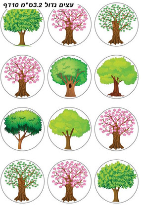 Large Shkedia Tree Stickers