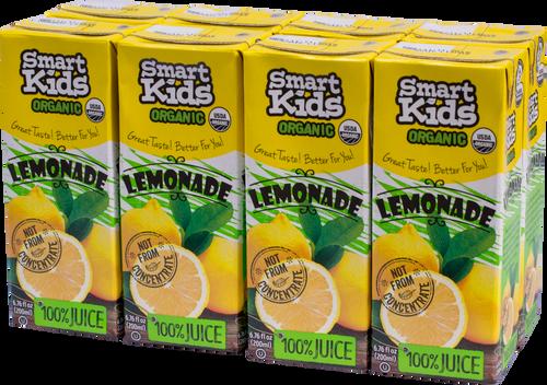 Smart Kids Lemonade Juice Boxes