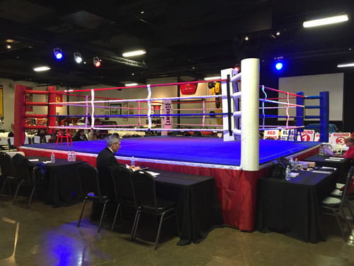 Professional Boxing Ring 16' x 16' Made in USA Crafted with Pride in the U.S.A.