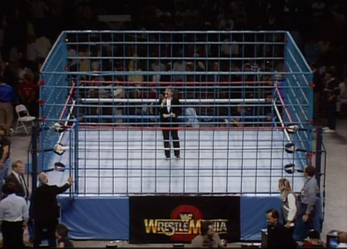 Professional Wrestling Ring Square Cage Made in the U.S.A.