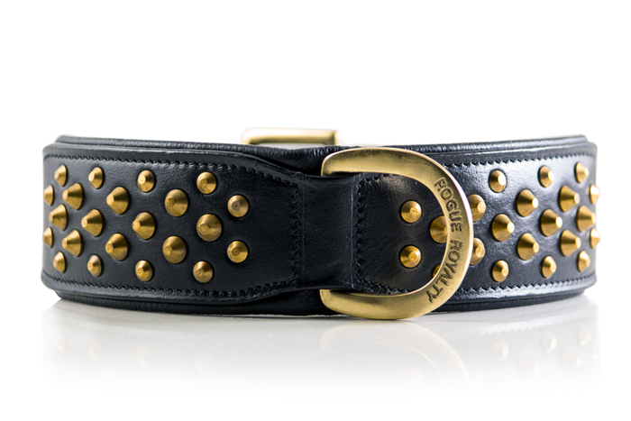 Ruff Neck Collar - Black & Brass