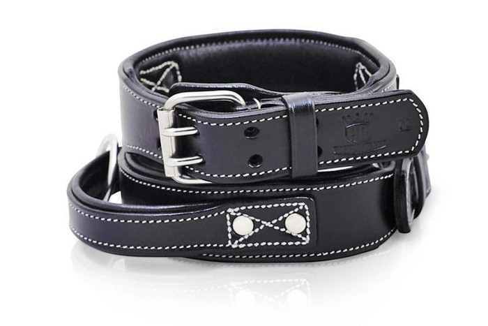 Leather Handle Dog Collar- Agitation