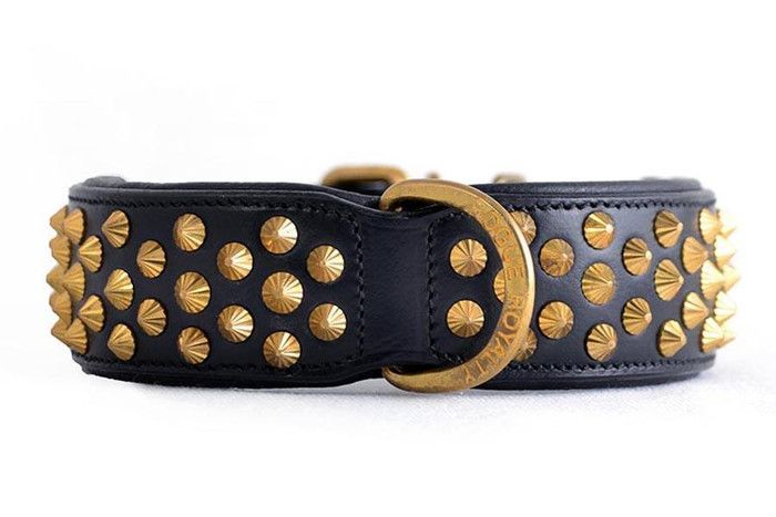Ruthless Collar - Black & Brass