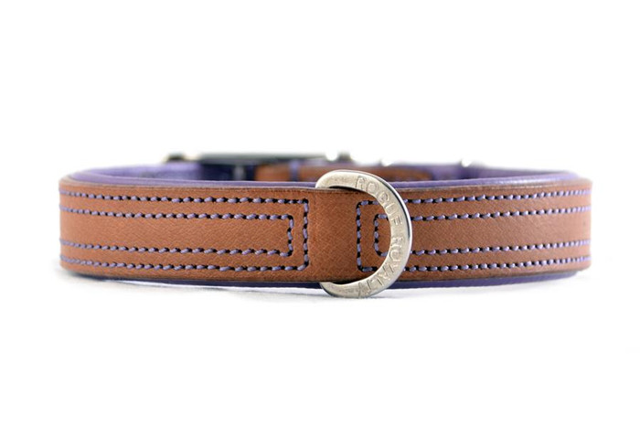 Tuscan Rogue Collar - Tan & Purple