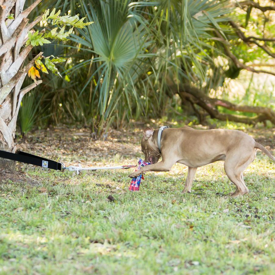 Super Tug - Dog Pulling Exercise Toy