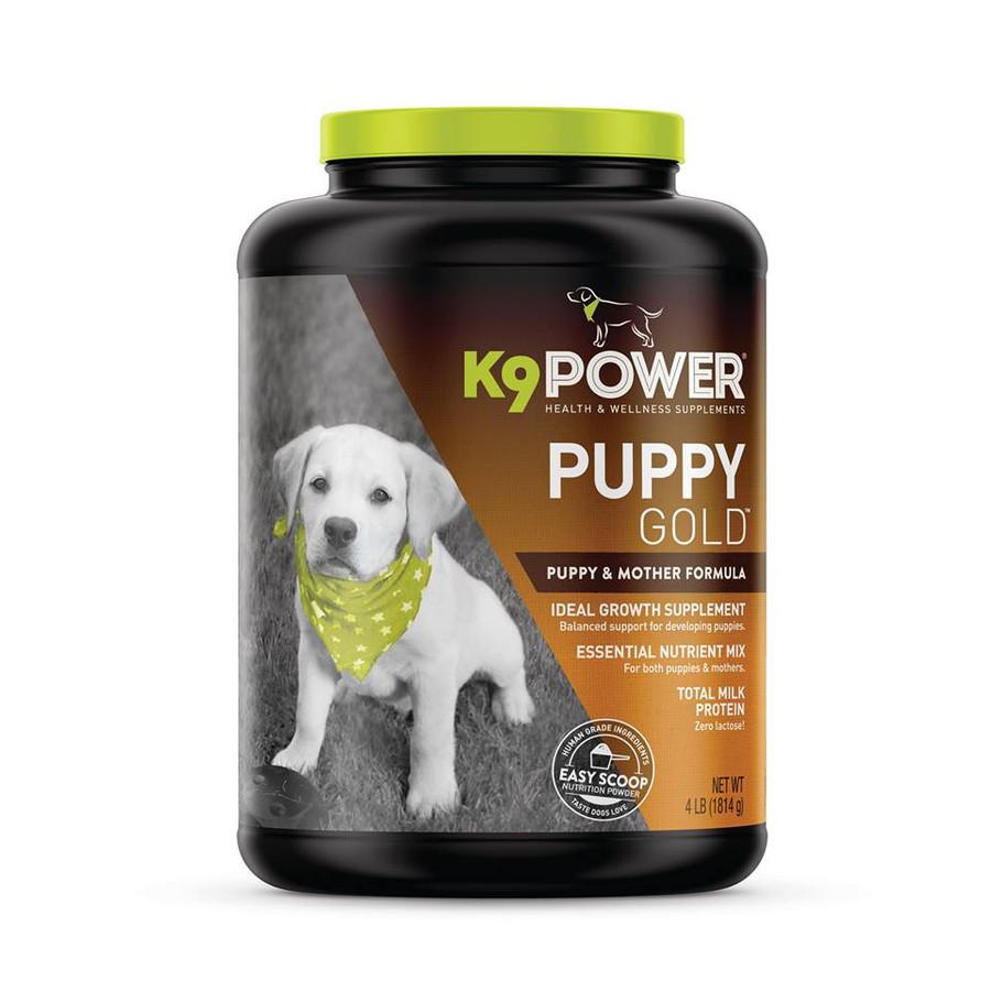 K9 Puppy Gold