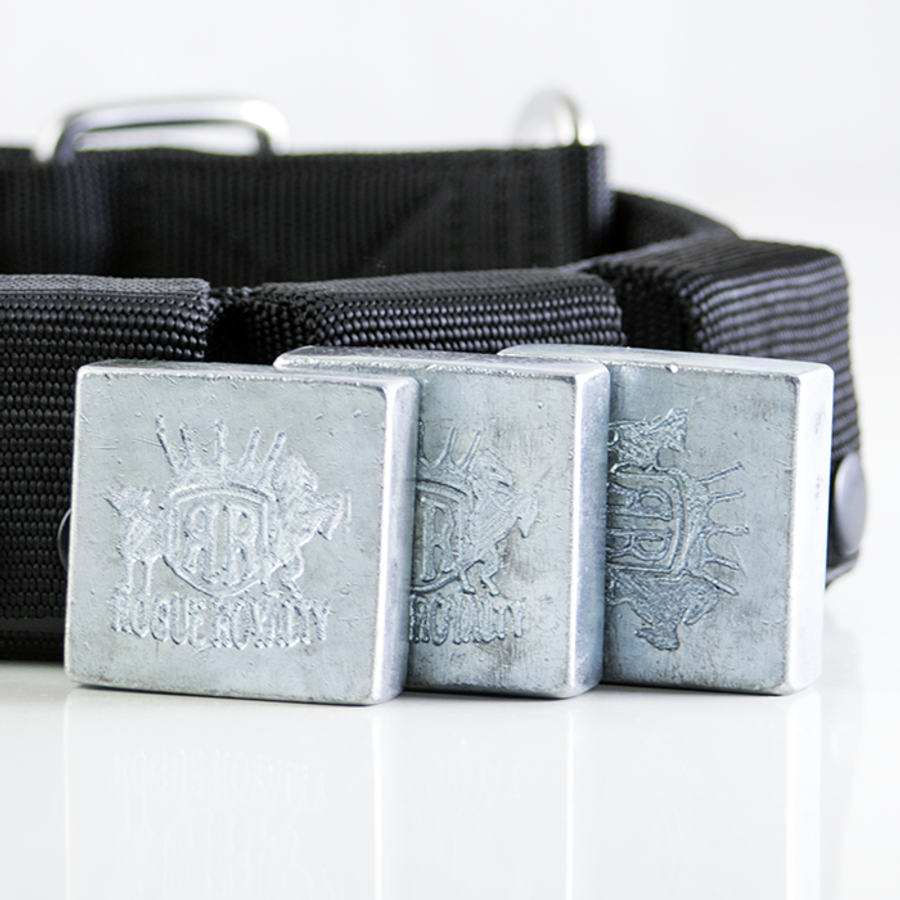 SupaTuff Weighted Dog Collar - Weight Ingots