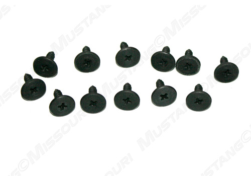 1971-1973 Ford Mustang well liner screws, set of 12.