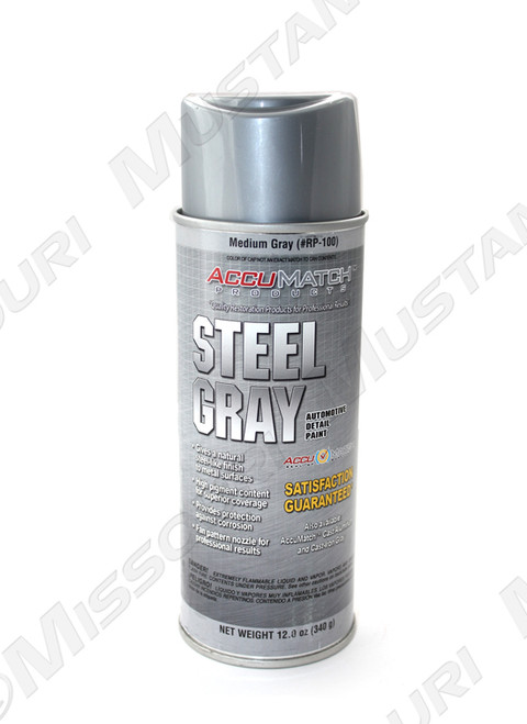 Steel Gray Detail Paint