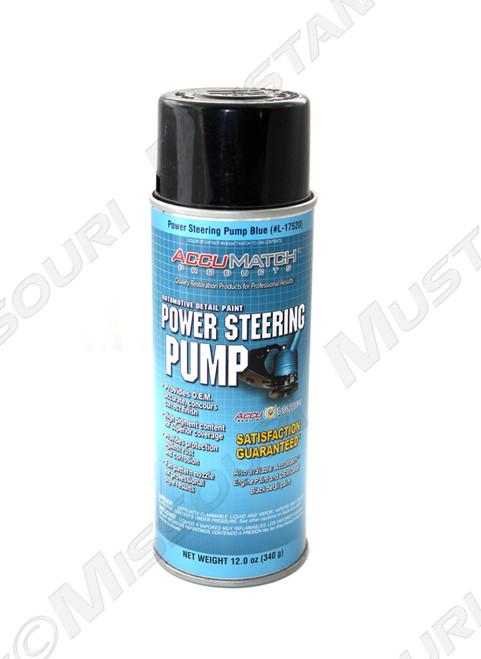 Power Steering Pump Paint