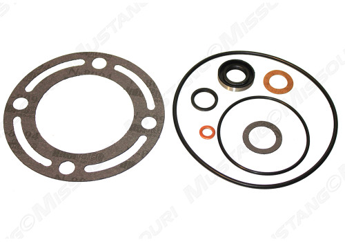 1965-73  Power Steering Seal Kit Ford Pump