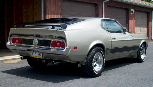 1973 Ford Mustang Mach 1 trunk lid stripe kit.  This set includes Mach I letters as part of stripe.