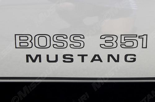 1971 Ford Mustang Boss 351 Fender decal. Installed on fender.