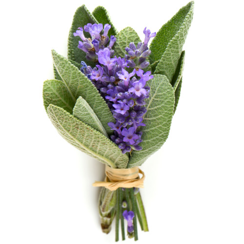 Lavender Sage fragrance oil for soap and candle making from New York Scent