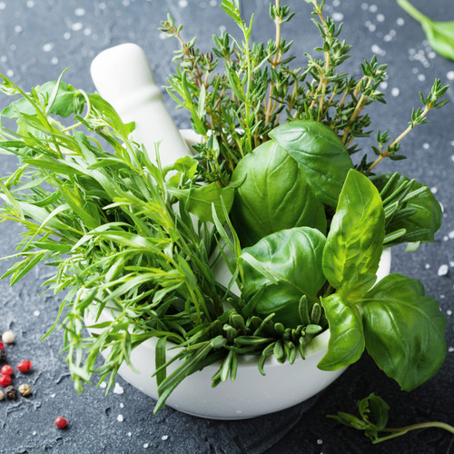 Arugula (Type) fragrance oil for wax melts and candle making from New York Scent