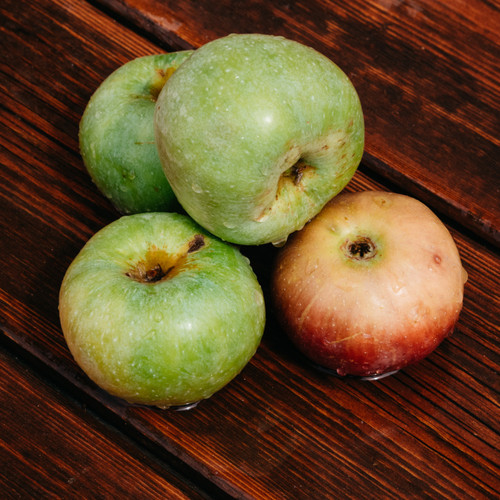 Mahogany Apple (BBW Type) fragrance oil for soap and candle making from New York Scent