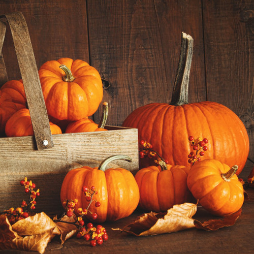 Pumpkin Mahogany fragrance oil for soap and candle making from New York Scent