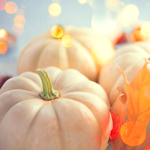 Pumpkin Coconut (BBW type) fragrance oil for soap and candle making from New York Scent