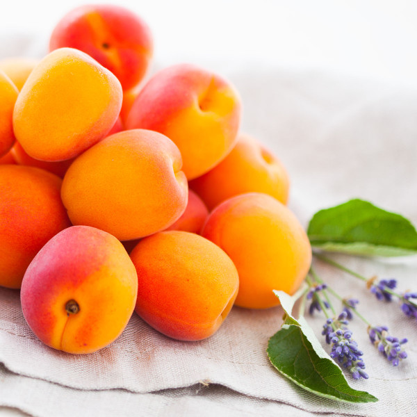 Lavender & Spring Apricot Fragrance Oil for Soap and Candle Making from New York Scent