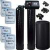 Dual Alternating Tank 2 cubic Foot (64k) Fleck 9100 On Demand Whole Home Water Softener with High Capacity Resin