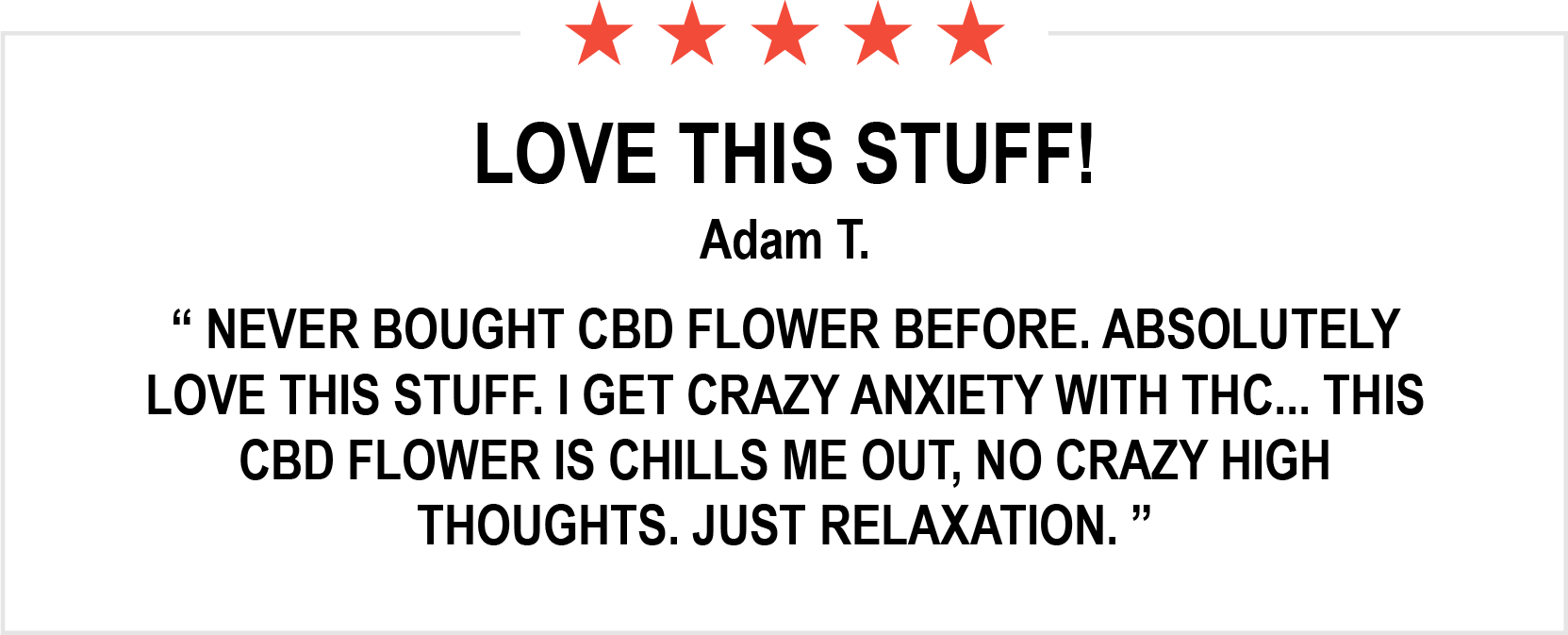 Review Adam T