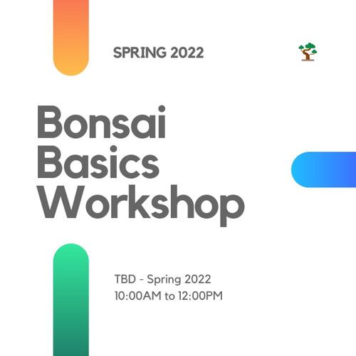 Bonsai Basics Workshop (Spring 2022)