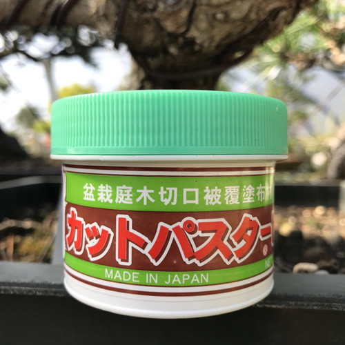 Japanese Cut Paste - Conifers and Azalea's