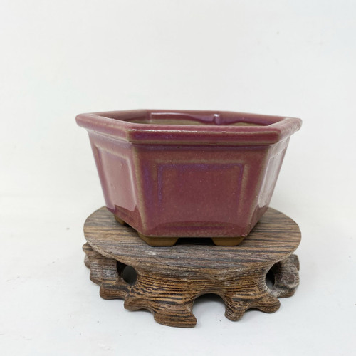 Japanese Pot for Kusamono, Accessory or Shohin Planting (KUS010)