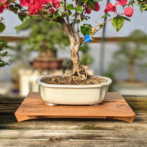 "15"" Bonsai Display Table - Split Top (052)"