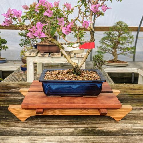"10"" Bonsai Display Table - Split Top (054)"