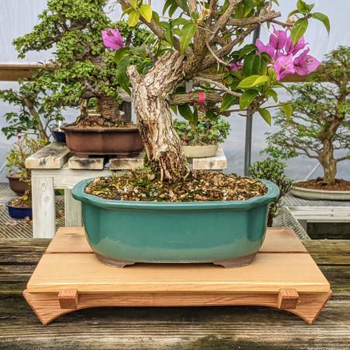 "13"" Bonsai Display Table - Split Top (057)"