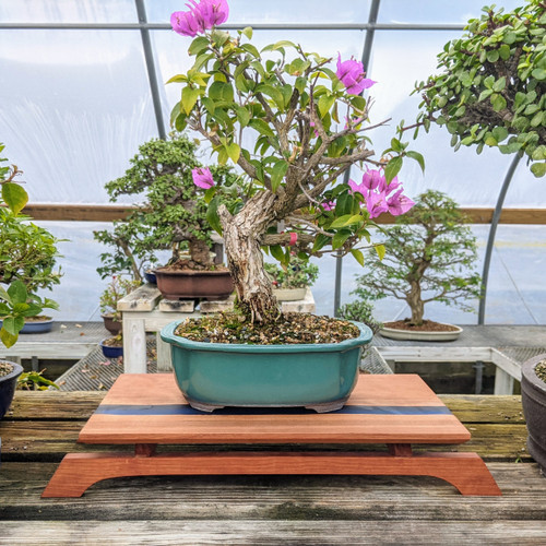 """16"""" Bonsai Display Table with River Effect (060)"""