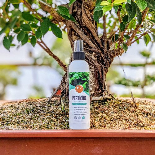 Ho Yoku Pesticide: All-Natural In Ready-To-Use Spray Bottle