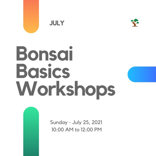 Bonsai Basics Workshop (Sunday - July 25, 2021)