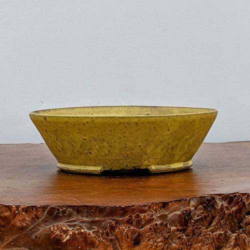 """7"""" Handmade Planter by the Pot Punching Potters (107)"""