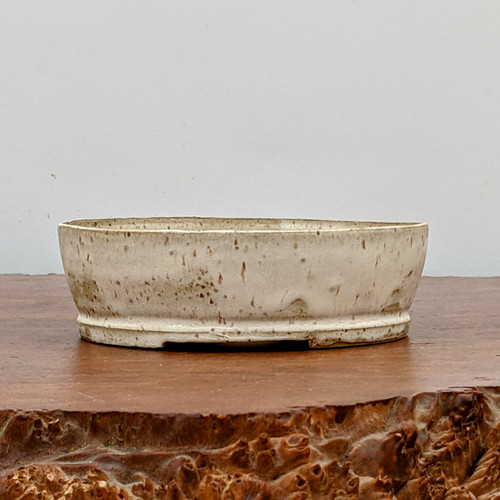 """5"""" Handmade Planter by the Pot Punching Potters (113)"""