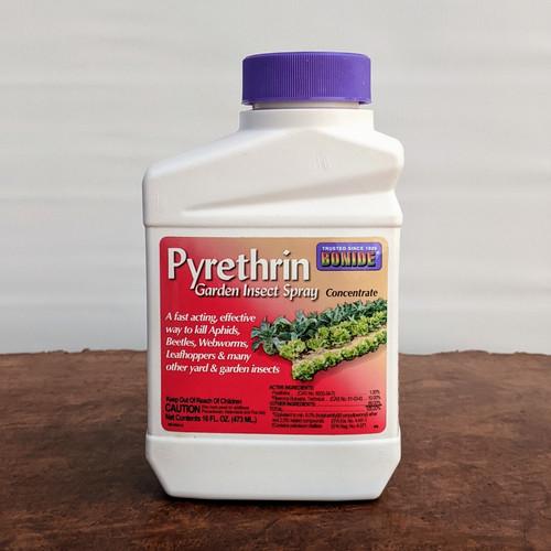 Pyrethrin Concentrate 16 FL. OZ