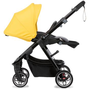 Parent facing [Yellow Sulphur]