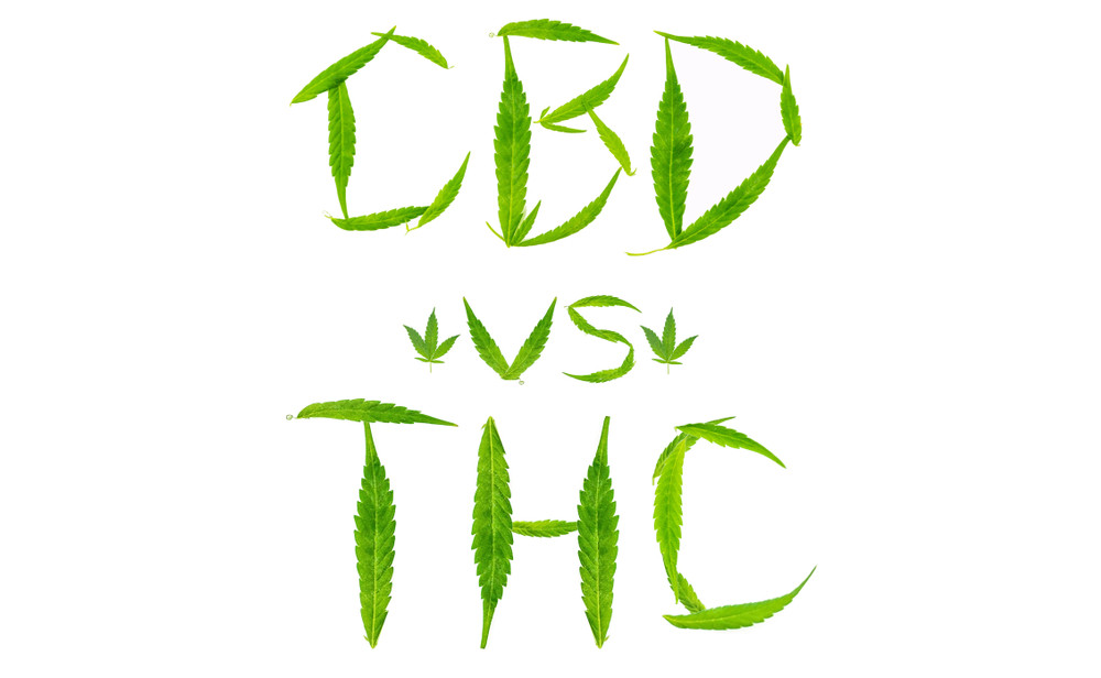 A Classic Cannabinoid Battle Renewed in 2021: CBD vs. THC