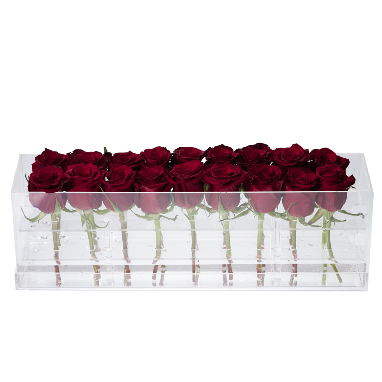 SOLD OUT - Sea of Love Fresh-Cut Roses