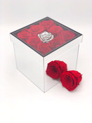 Roses in the Mirror Box