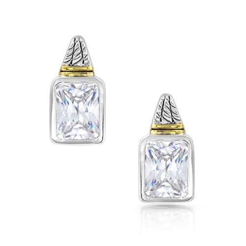 Two Tone Brilliance Earrings by Montana Silversmith ER4733