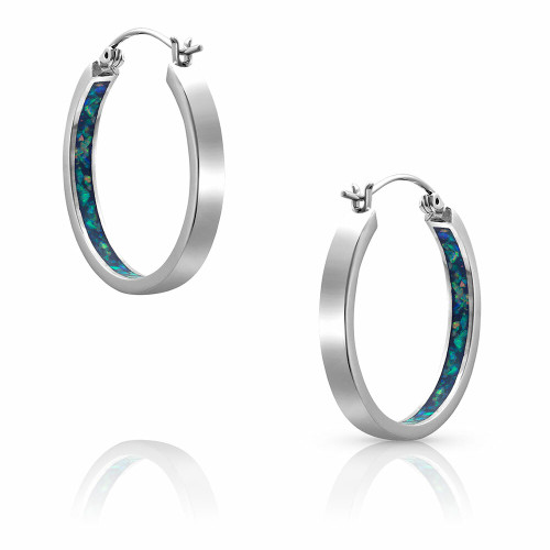 Hidden Depths Earrings by Montana Silversmiths ER4562
