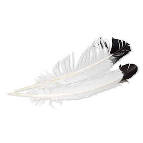 Large White with Black Tip Hat Feather by Fashion West F-12