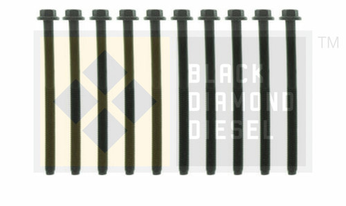 Black Diamond 03-10 Ford 6.0 Powerstroke Cylinder Head Bolt Set (1 head)