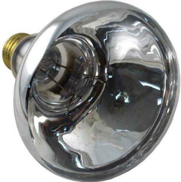 Pentair Pentair 79101800 Replacement Bulb American 100W 12V