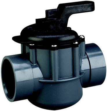 Pentair Pentair 263029 2-Inch 2-Way Diverter Valve
