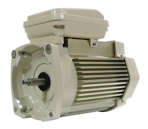 Pentair Pentair TEFC Replacement Motor 1 HP, 115/208V - 354821S